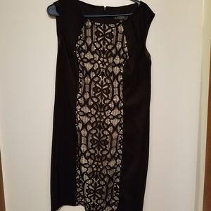 Dress Barn Dresses - Dress barn collections sleeveless dress